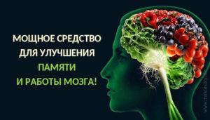 Рейтинг: ТОП-9 лучших таблеток для памяти и мозга